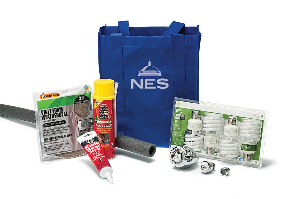 Free NES Energy Savers Workshop kit